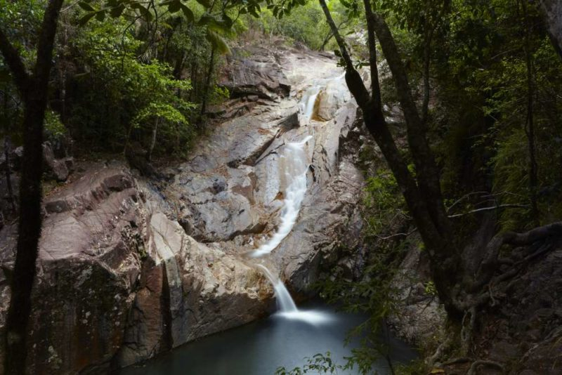 Coffs Coast Holiday Parks National Parks