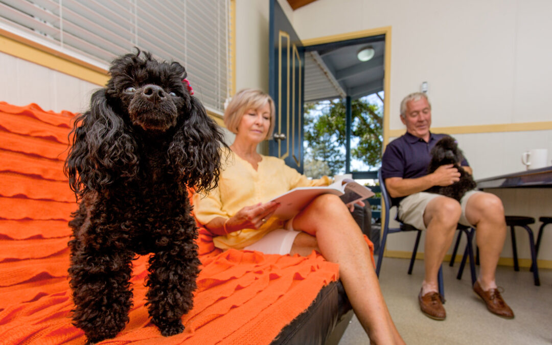 Pet Friendly Water View Villas Now At Woolgoolga Lakeside